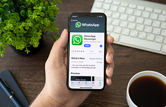 Work From Home Using WhatsApp!